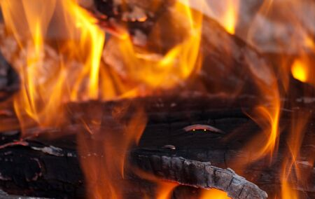 background from a fire, conflagrant firewoods and coals Stock Photo - 6032670