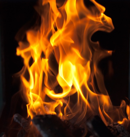 flames from a fire on a black background. picture. Stock Photo - 11893822