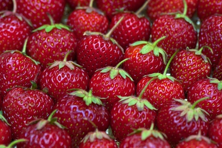 fresh strawberry on the clean isolated background photo