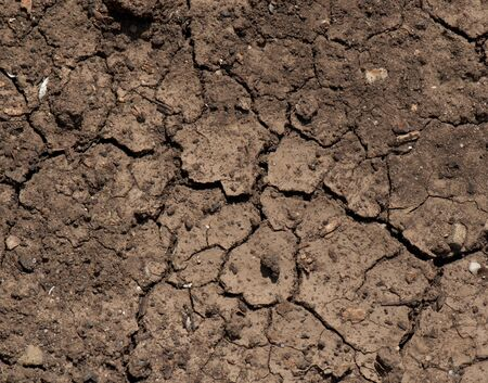 dried ground covered with cracks. background for design  photo