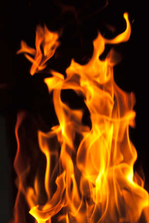 flames from a fire on a black background. picture. photo
