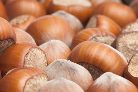 Composition from nuts on the white isolated background Stock Photo - 12587715