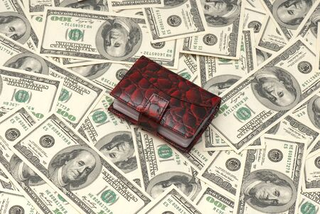 Leather purse cards on background of American money. Studio photo Stock Photo - 12587969