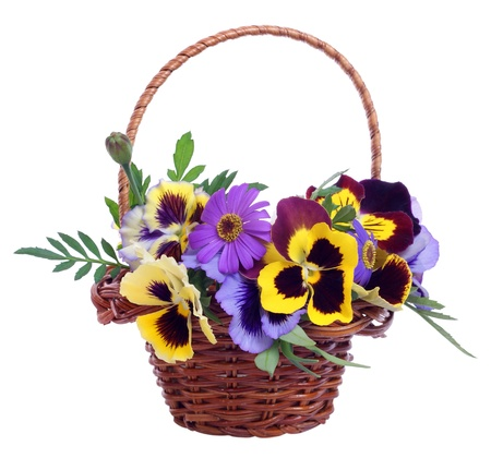 basket of various flowers on white background photo