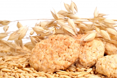 oats and oatmeal cookies  photo