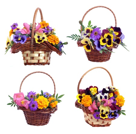 osier: set of baskets with various flowers on white background