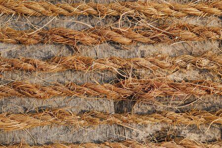 nature rope Stock Photo