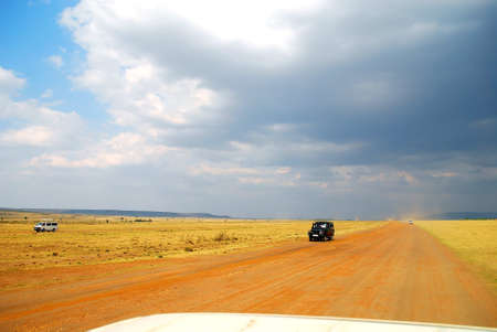 game drive: game drive at masai mara kenya