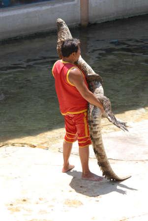 krokodýl lovec show na krokodýlí farmě v Samutprakarn Thajsku