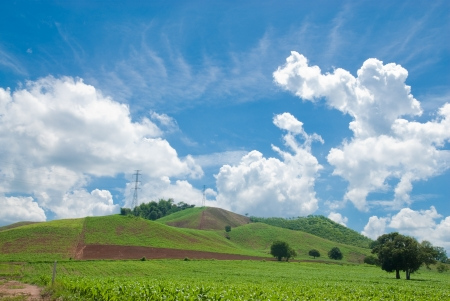 hills with blue sky