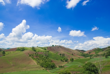 hill with blue sky