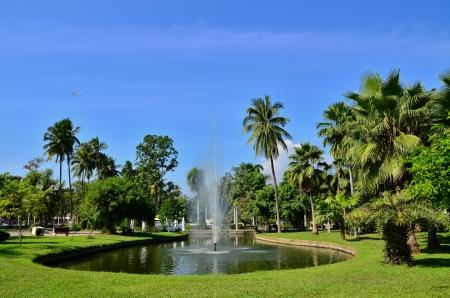 Public park  photo