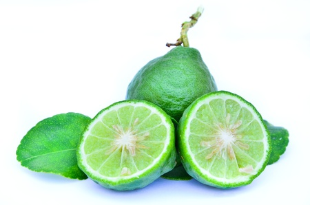 Kaffir Bergamot isolated on white