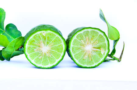 Kaffir Bergamot isolated photo