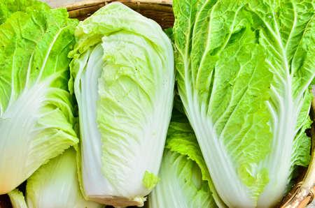 romaine: A head of romaine lettuce Stock Photo