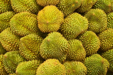 Durian blackground photo