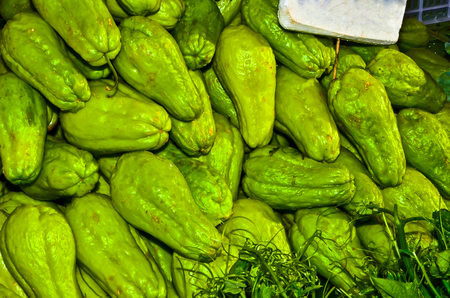 chayote: Fresh Chayote vegetables Stock Photo