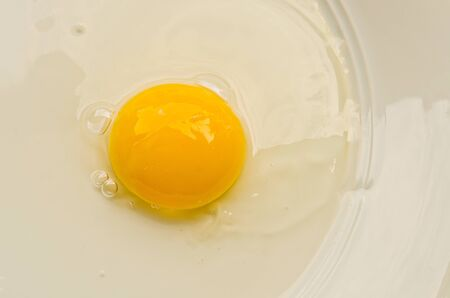 albumin: separated egg