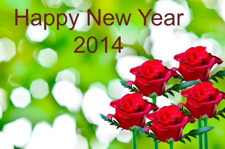 red rose bokeh: Beautiful red rose write happy new year on green bokeh