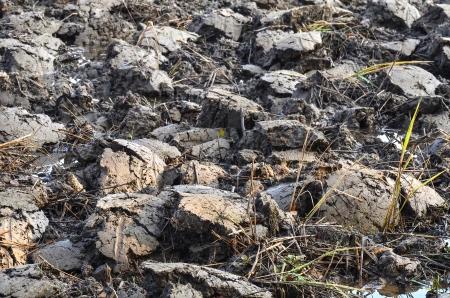 roughing: wet brown soil Stock Photo