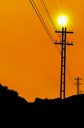 electricity pylons at the sunset photo