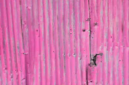 corrugated iron: dirty and Rusted pink galvanized iron roof