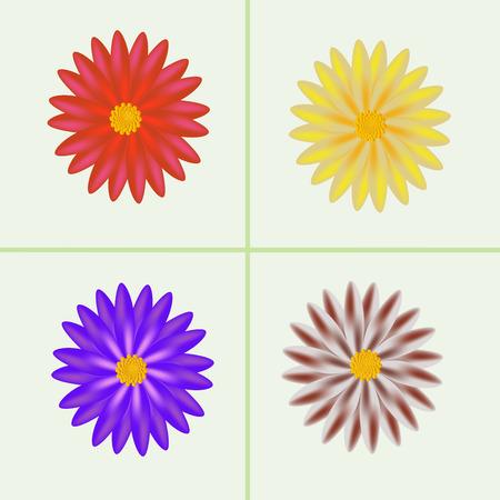abloom: hermosas flores Vectores