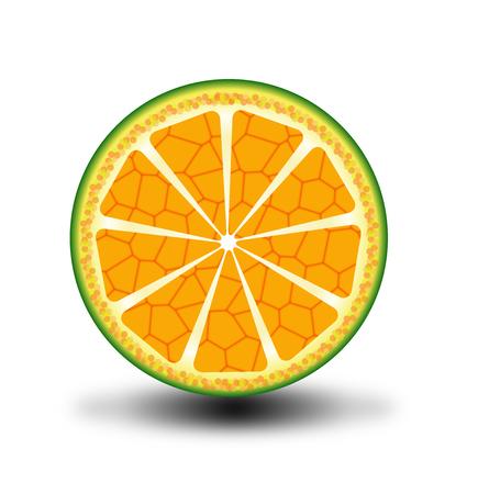 citrus tree: Citrus slice