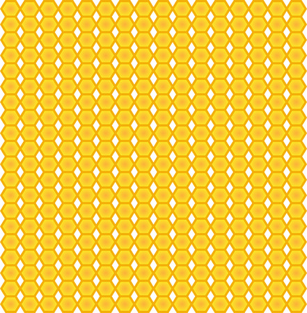 pattern with honeycomb Vector