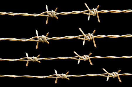 Strands of barb wire isolated on black