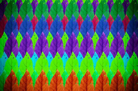 muti: Muti color dry leaf background in vitage light Stock Photo