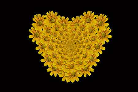 Beautyful Little Yellow Star flower on Heart Pattern