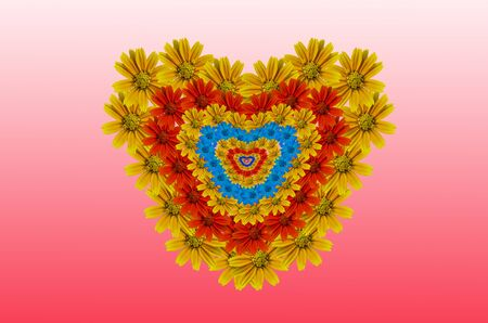 muti: Muti color Little Yellow Star flower on Heart Pattern Stock Photo