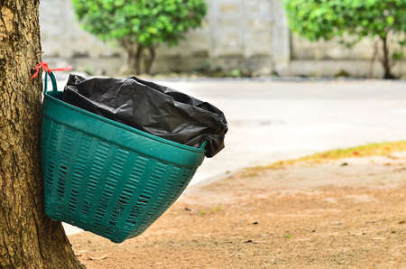 waste basket: Waste basket on tree