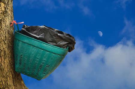 waste basket: Waste basket on tree in blue sky  background