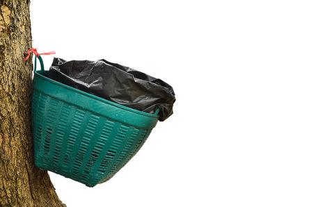 waste basket: Waste basket on tree in white  background