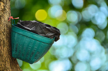 waste basket: Waste basket on tree in sunny abstract  background Stock Photo