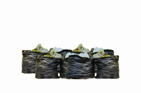 disposed: Many garbage and waiste in black bags on white background