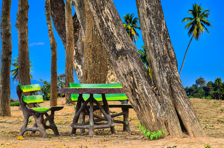 pubic: invention bench at pubic park on blue nature background