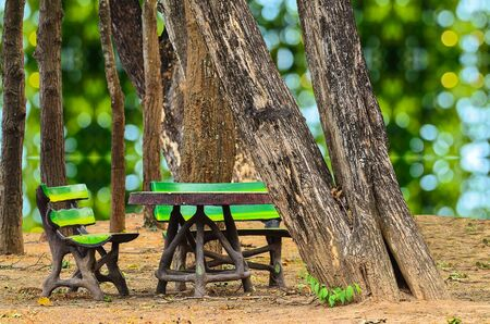 pubic: invention bench at pubic park on green nature background