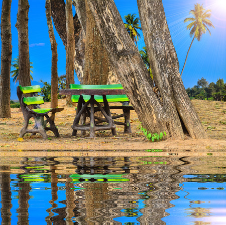 pubic: invention bench at pubic park on blue nature and reflect