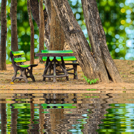 pubic: invention bench at pubic park on green nature and reflect