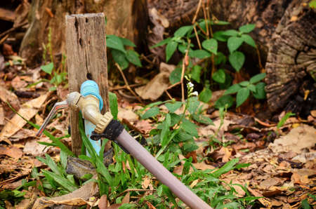 Old faucet with plastic line tube in garden