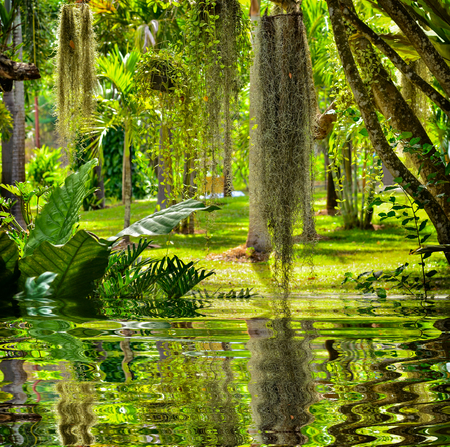 Beautiful lanscape garden with reflect