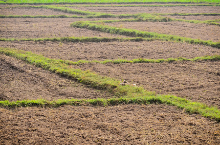 Landscape agriculture soil and grass Stock Photo