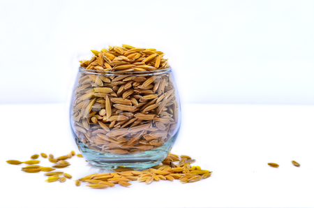 Yellow Paddy in glass on white background