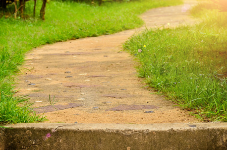 pathway with green field in garden Stock Photo