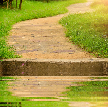 pathway with reflect in garden Stock Photo