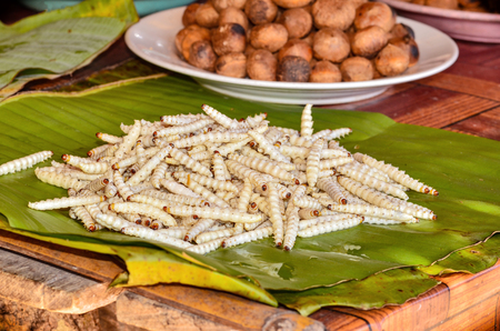 Bamboo caterpilla on sell in market Stock Photo