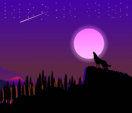 Wolf silhouette in moon light night nature
